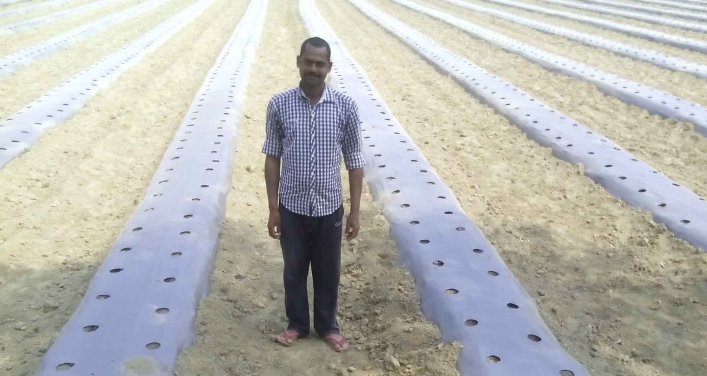 Image result for malching kheti